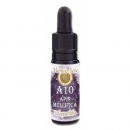 Homöo-Sole Apis mellifica 10 ml